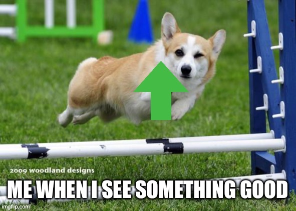 ME WHEN I SEE SOMETHING GOOD | image tagged in upvote corgi | made w/ Imgflip meme maker