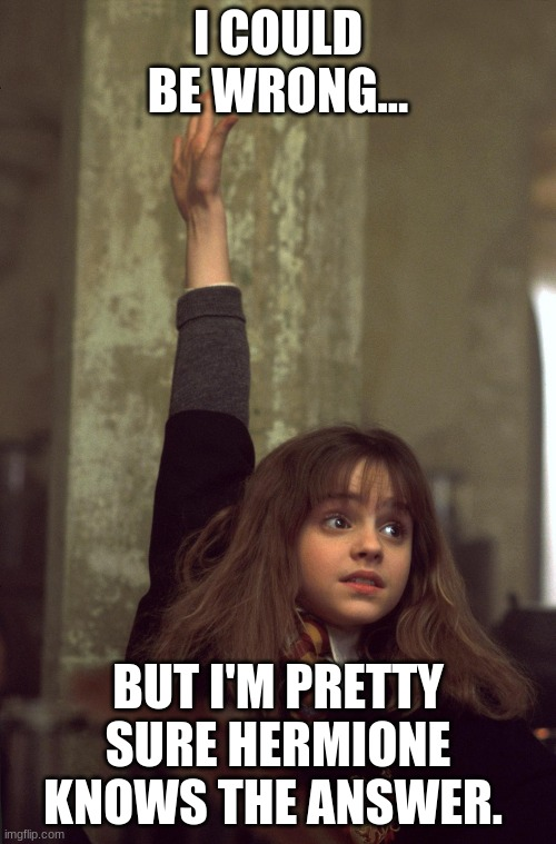 harry potter nerd | I COULD BE WRONG... BUT I'M PRETTY SURE HERMIONE KNOWS THE ANSWER. | image tagged in harry potter nerd | made w/ Imgflip meme maker