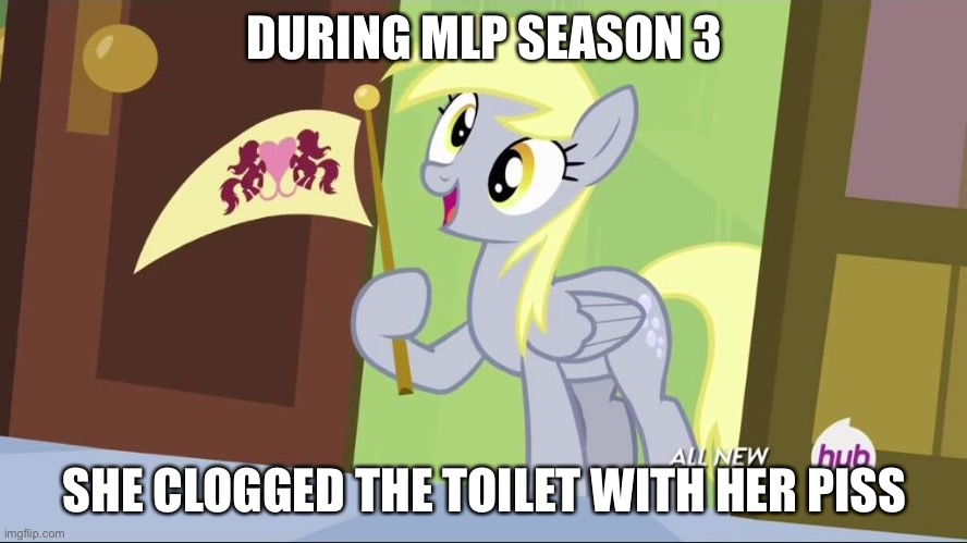 Derpy Hooves facts | DURING MLP SEASON 3 SHE CLOGGED THE TOILET WITH HER PISS | image tagged in derpy hooves facts | made w/ Imgflip meme maker