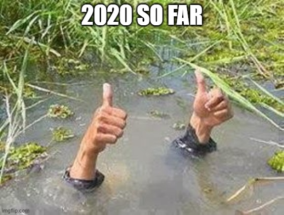 FLOODING THUMBS UP | 2020 SO FAR | image tagged in flooding thumbs up | made w/ Imgflip meme maker