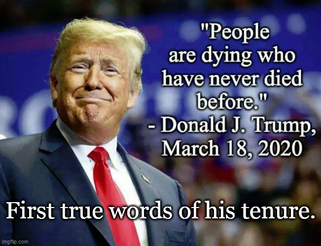 First true words of his tenure. | image tagged in donald trump,truth | made w/ Imgflip meme maker