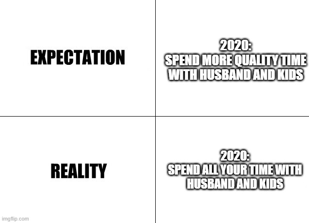 Expectation vs Reality |  2020: SPEND MORE QUALITY TIME WITH HUSBAND AND KIDS; 2020: SPEND ALL YOUR TIME WITH HUSBAND AND KIDS | image tagged in expectation vs reality | made w/ Imgflip meme maker