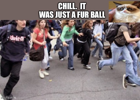 CHILL.  IT WAS JUST A FUR BALL | made w/ Imgflip meme maker