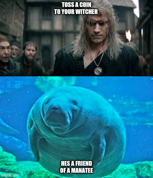 A friend of a manatee | TOSS A COIN TO YOUR WITCHER HES A FRIEND OF A MANATEE | image tagged in witcher,witcher 3,manatee,funny | made w/ Imgflip meme maker