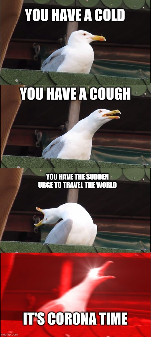 its corona tyme | YOU HAVE A COLD YOU HAVE A COUGH YOU HAVE THE SUDDEN URGE TO TRAVEL THE WORLD IT'S CORONA TIME | image tagged in memes,inhaling seagull | made w/ Imgflip meme maker