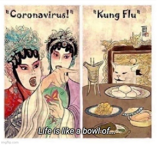 Nothing you say can change my mind! |  Life is like a bowl of... | image tagged in coronavirus vs kung flu,forrest gump box of chocolates,chinese food,coronavirus,woman yelling at cat,the great awakening | made w/ Imgflip meme maker