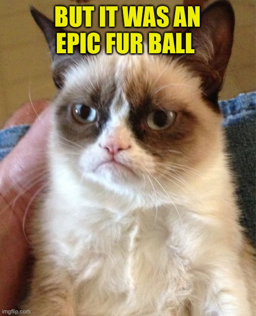 Grumpy Cat Meme | BUT IT WAS AN EPIC FUR BALL | image tagged in memes,grumpy cat | made w/ Imgflip meme maker