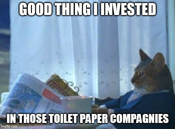 I Should Buy A Boat Cat |  GOOD THING I INVESTED; IN THOSE TOILET PAPER COMPAGNIES | image tagged in memes,i should buy a boat cat | made w/ Imgflip meme maker