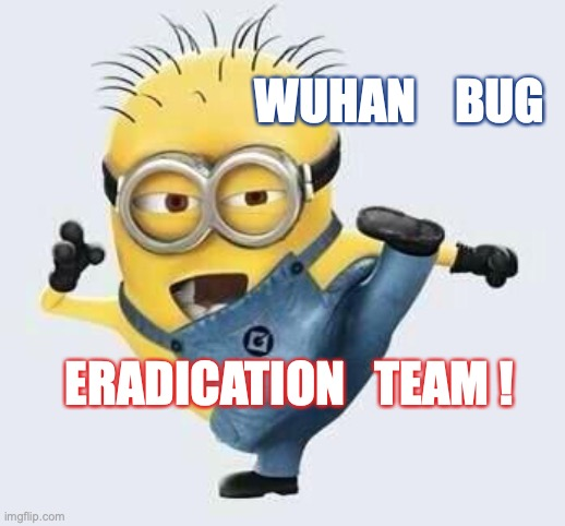 Wuhan BUG Eradication Team | WUHAN    BUG ERADICATION   TEAM ! | image tagged in wuhan,corona virus,minion,team | made w/ Imgflip meme maker