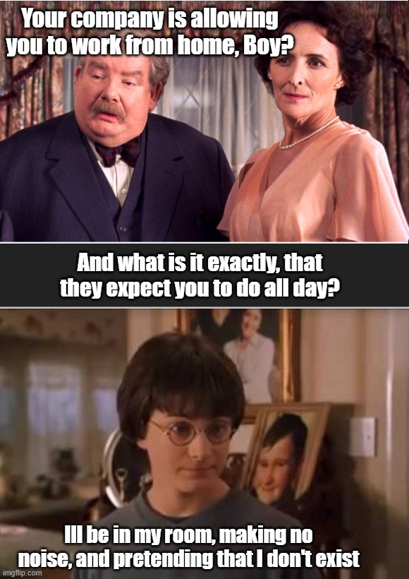 When Harry Potter works from home | Your company is allowing you to work from home, Boy? And what is it exactly, that they expect you to do all day? Ill be in my room, making n | image tagged in harry potter,work from home,funny work from home,funny harry potter work from home meme | made w/ Imgflip meme maker