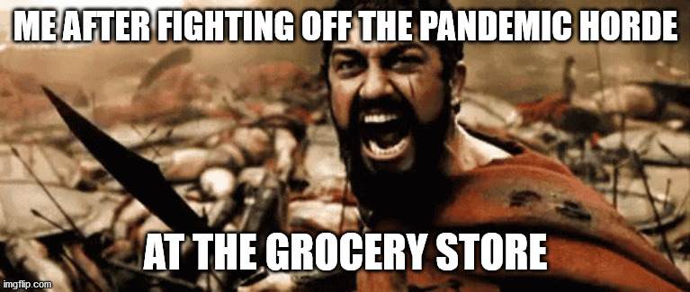 ME AFTER FIGHTING OFF THE PANDEMIC HORDE; AT THE GROCERY STORE | image tagged in covid-19,panic,hoarding,grocery store,groceries | made w/ Imgflip meme maker