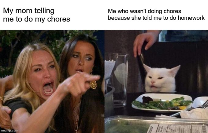 My mom | My mom telling me to do my chores Me who wasn't doing chores because she told me to do homework | image tagged in memes,woman yelling at cat | made w/ Imgflip meme maker