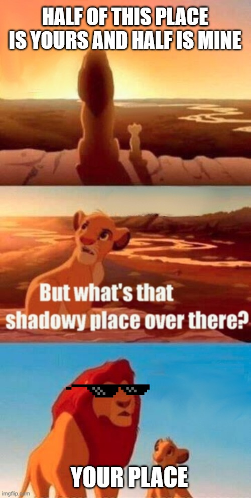 Simba Shadowy Place Meme | HALF OF THIS PLACE IS YOURS AND HALF IS MINE YOUR PLACE | image tagged in memes,simba shadowy place | made w/ Imgflip meme maker