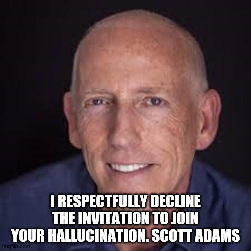 Scott Adams quote |  I RESPECTFULLY DECLINE THE INVITATION TO JOIN YOUR HALLUCINATION. SCOTT ADAMS | image tagged in inspirational quote | made w/ Imgflip meme maker