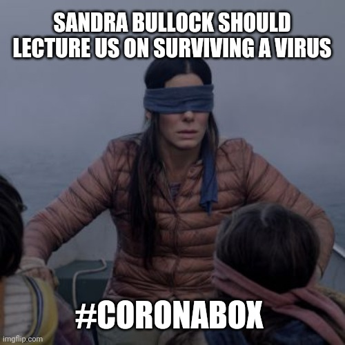 Bird box | SANDRA BULLOCK SHOULD LECTURE US ON SURVIVING A VIRUS #CORONABOX | image tagged in bird box | made w/ Imgflip meme maker