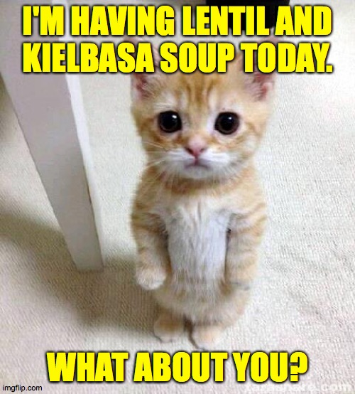 Decent meals from stuff you can still buy.  Add rice and a side salad of whatever's going bad in the crisper  ( : |  I'M HAVING LENTIL AND KIELBASA SOUP TODAY. WHAT ABOUT YOU? | image tagged in memes,cute cat,yum | made w/ Imgflip meme maker