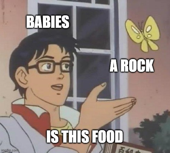 Is This A Pigeon |  BABIES; A ROCK; IS THIS FOOD | image tagged in memes,is this a pigeon | made w/ Imgflip meme maker
