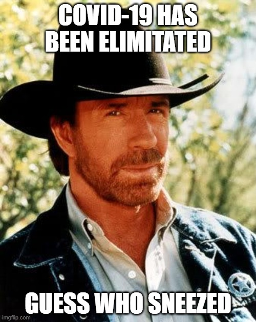 Chuck Norris Meme | COVID-19 HAS BEEN ELIMITATED GUESS WHO SNEEZED | image tagged in memes,chuck norris | made w/ Imgflip meme maker