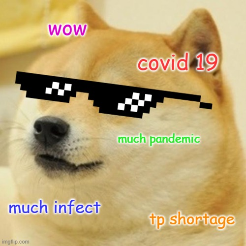 Doge Meme |  wow; covid 19; much pandemic; much infect; tp shortage | image tagged in memes,doge | made w/ Imgflip meme maker