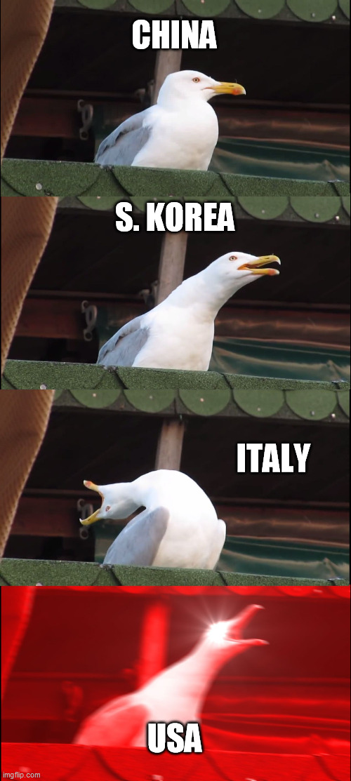 Inhaling Seagull Meme | CHINA S. KOREA ITALY USA | image tagged in memes,inhaling seagull | made w/ Imgflip meme maker
