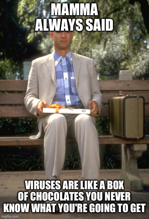 Forest gump |  MAMMA ALWAYS SAID; VIRUSES ARE LIKE A BOX OF CHOCOLATES YOU NEVER KNOW WHAT YOU'RE GOING TO GET | image tagged in forest gump | made w/ Imgflip meme maker