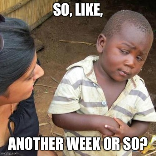 Third World Skeptical Kid Meme | SO, LIKE, ANOTHER WEEK OR SO? | image tagged in memes,third world skeptical kid | made w/ Imgflip meme maker