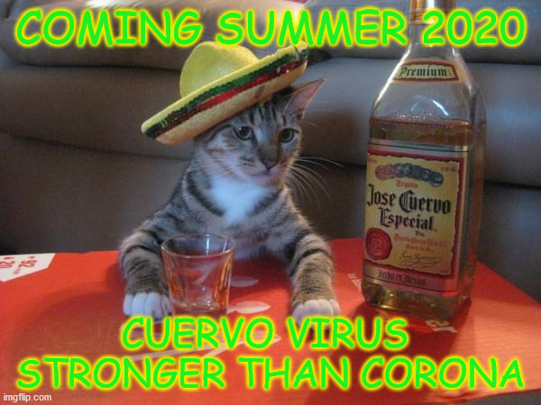 Cat Jose Cuervo | COMING SUMMER 2020 CUERVO VIRUS  STRONGER THAN CORONA | image tagged in cat jose cuervo | made w/ Imgflip meme maker