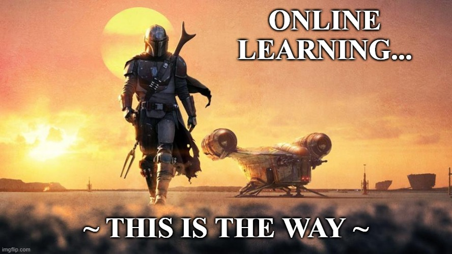 Online Learning |  ONLINE LEARNING... ~ THIS IS THE WAY ~ | image tagged in mandalorian,online learning,digital learning,teaching | made w/ Imgflip meme maker