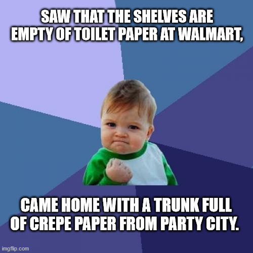 Success Kid |  SAW THAT THE SHELVES ARE EMPTY OF TOILET PAPER AT WALMART, CAME HOME WITH A TRUNK FULL OF CREPE PAPER FROM PARTY CITY. | image tagged in memes,success kid,no more toilet paper,coronavirus,shortage,winning | made w/ Imgflip meme maker