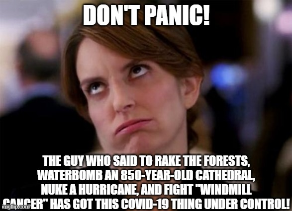 "Don't Panic! |  DON'T PANIC! THE GUY WHO SAID TO RAKE THE FORESTS, WATERBOMB AN 850-YEAR-OLD CATHEDRAL, NUKE A HURRICANE, AND FIGHT ""WINDMILL CANCER"" HAS GOT THIS COVID-19 THING UNDER CONTROL! 