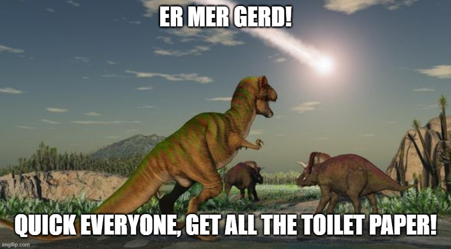 Dinosaur TP |  ER MER GERD! QUICK EVERYONE, GET ALL THE TOILET PAPER! | image tagged in dinosaurs meteor,covid-19,covid19,dinosaurs | made w/ Imgflip meme maker