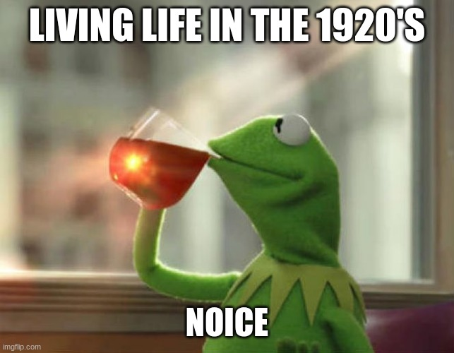 But That's None Of My Business (Neutral) |  LIVING LIFE IN THE 1920'S; NOICE | image tagged in memes,but thats none of my business neutral | made w/ Imgflip meme maker