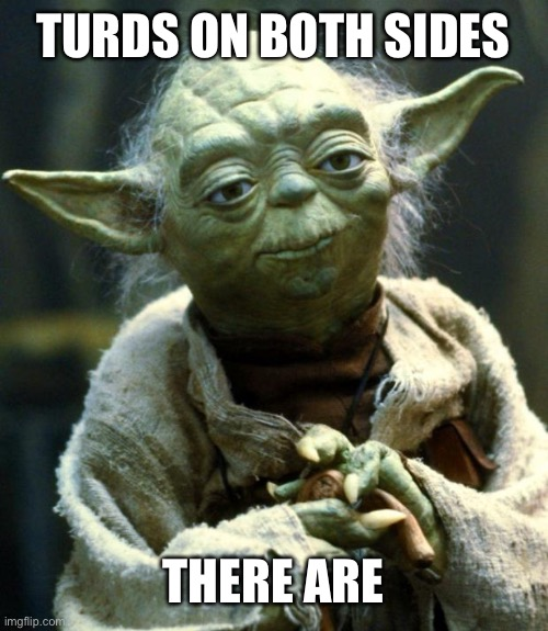 TURDS ON BOTH SIDES THERE ARE | image tagged in memes,star wars yoda | made w/ Imgflip meme maker