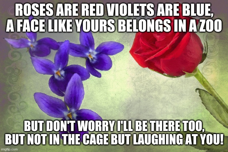 Roses are many colors other than red, violets are fricken violet |  ROSES ARE RED VIOLETS ARE BLUE, A FACE LIKE YOURS BELONGS IN A ZOO; BUT DON'T WORRY I'LL BE THERE TOO, BUT NOT IN THE CAGE BUT LAUGHING AT YOU! | image tagged in roses are many colors other than red violets are fricken violet | made w/ Imgflip meme maker