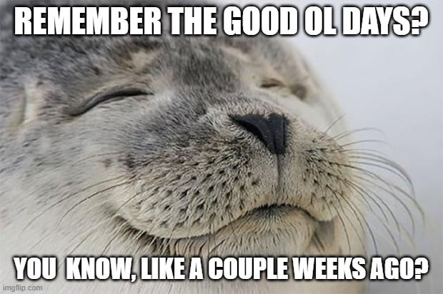 Satisfied Seal |  REMEMBER THE GOOD OL DAYS? YOU  KNOW, LIKE A COUPLE WEEKS AGO? | image tagged in memes,satisfied seal | made w/ Imgflip meme maker