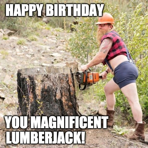 Happy Birthday Lumberjack |  HAPPY BIRTHDAY; YOU MAGNIFICENT; LUMBERJACK! | image tagged in happy birthday,birthday,lumberjack | made w/ Imgflip meme maker