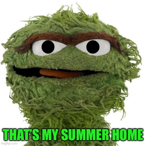 Oscar The Grouch | THAT'S MY SUMMER HOME | image tagged in oscar the grouch | made w/ Imgflip meme maker