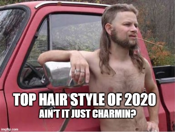 Hillbilly Mullet |  TOP HAIR STYLE OF 2020; AIN'T IT JUST CHARMIN? | image tagged in hillbilly mullet | made w/ Imgflip meme maker