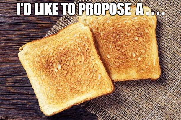 I'D LIKE TO PROPOSE  A . . . . | image tagged in funny,funny memes,funny meme,lol so funny,too funny,bad pun | made w/ Imgflip meme maker