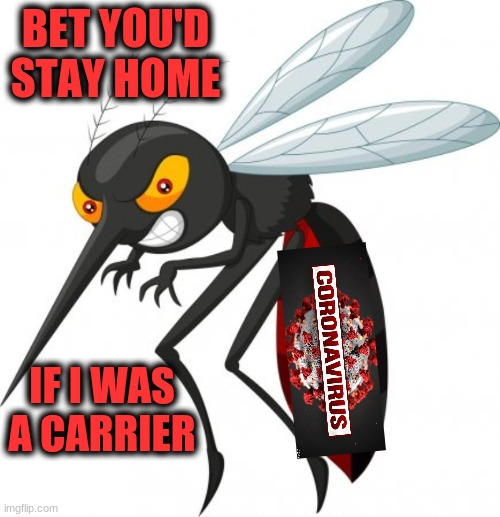 Be a Deet shortage | BET YOU'D STAY HOME IF I WAS A CARRIER | image tagged in memes,covid-19 | made w/ Imgflip meme maker