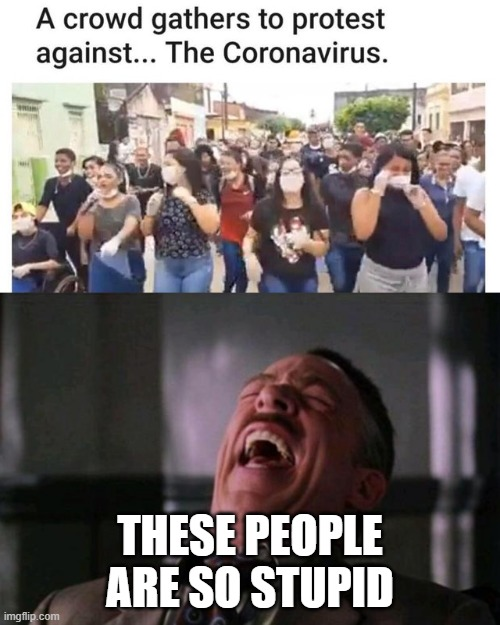 Look at these dudes | THESE PEOPLE ARE SO STUPID | image tagged in spider man boss,crowd,funny,memes,stupid,stupid people | made w/ Imgflip meme maker