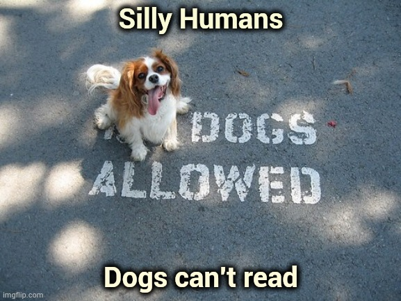 Stickin' it to the Man | Silly Humans Dogs can't read | image tagged in obey,what,get off my lawn,signs/billboards,meaning,nothing to see here | made w/ Imgflip meme maker