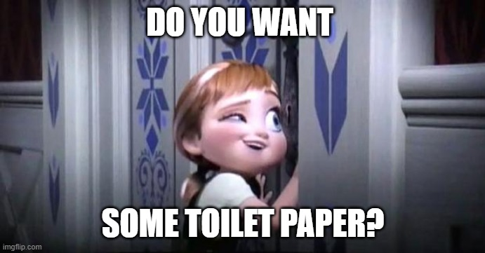 frozen little anna |  DO YOU WANT; SOME TOILET PAPER? | image tagged in frozen little anna | made w/ Imgflip meme maker