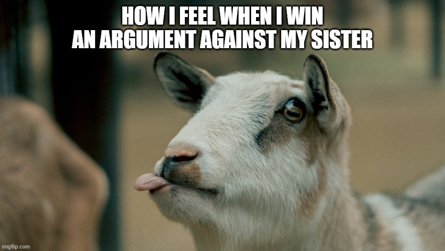 HOW I FEEL WHEN I WIN AN ARGUMENT AGAINST MY SISTER | image tagged in sibling rivalry | made w/ Imgflip meme maker