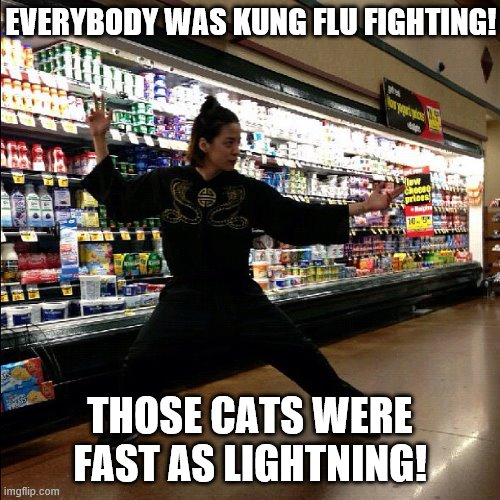But they still missed the toilet paper. |  EVERYBODY WAS KUNG FLU FIGHTING! THOSE CATS WERE FAST AS LIGHTNING! | image tagged in funny memes,coronavirus,ninja,toilet paper,grocery store | made w/ Imgflip meme maker