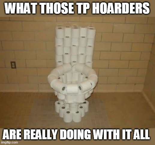 TP THRONE |  WHAT THOSE TP HOARDERS; ARE REALLY DOING WITH IT ALL | image tagged in toilet paper,game of thrones,hoarders,quarantine | made w/ Imgflip meme maker