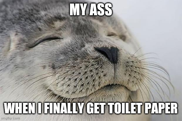 Satisfied Seal |  MY ASS; WHEN I FINALLY GET TOILET PAPER | image tagged in memes,satisfied seal | made w/ Imgflip meme maker
