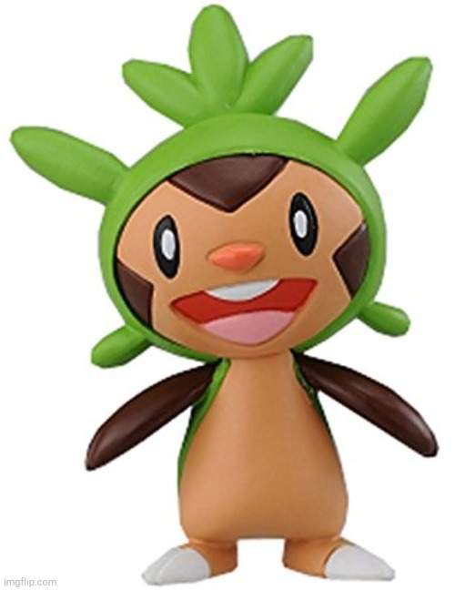 Chespin | image tagged in chespin | made w/ Imgflip meme maker