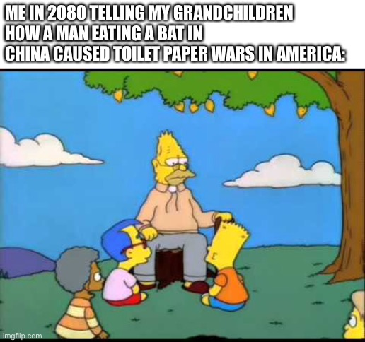 What a pandemic! |  ME IN 2080 TELLING MY GRANDCHILDREN HOW A MAN EATING A BAT IN CHINA CAUSED TOILET PAPER WARS IN AMERICA: | image tagged in memes,coronavirus,2020,future,toilet paper | made w/ Imgflip meme maker