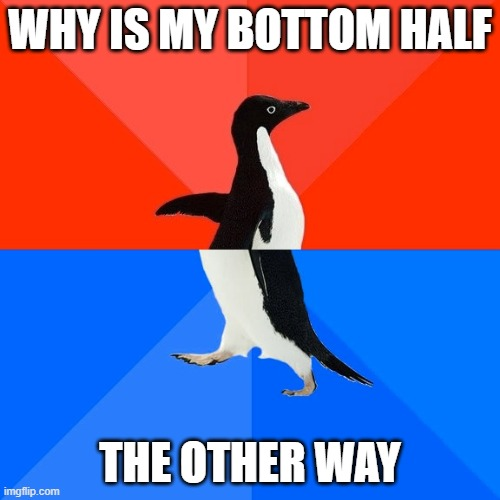 Socially Awesome Awkward Penguin |  WHY IS MY BOTTOM HALF; THE OTHER WAY | image tagged in memes,socially awesome awkward penguin | made w/ Imgflip meme maker